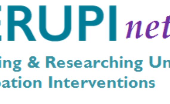 Nerupi Network Logo